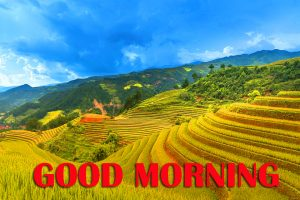 Amazing Good Morning Pictures Photo Images HD