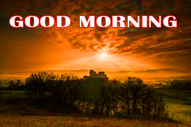 Amazing Good Morning Photo Images Pics HD Download