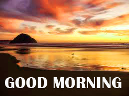 Amazing Good Morning Photo Images Pics Download