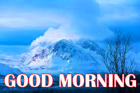 Amazing Good Morning Photo Pictures Images For Whatsapp
