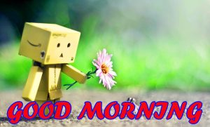 Cute Good Morning Photo Wallpaper Pictures Free HD