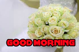 Good Morning Images Wallpaper Pic Download