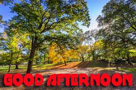 Good Afternoon Photo Images Pictures HD Download