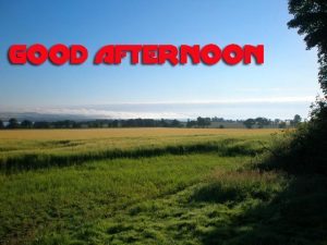 Good Afternoon Pictures Images Wallpaper Download
