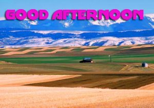 Good Afternoon Photo Images Pictures Free HD