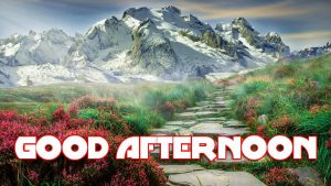 Good Afternoon Pictures Photo Images Download