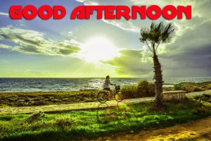 Good Afternoon Pictures Images Wallpaper Free HD