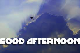 Good Afternoon Photo Image Pictures Download