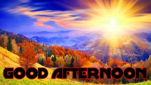 Good Afternoon Pictures Photo Images HD For Facebook