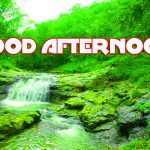 277+ Good Afternoon Images Wallpaper download HD For Whatsapp