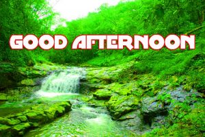 Good Afternoon Photo Images Pictures Download
