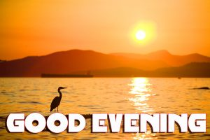 Good Evening Pictures Photo Images Free HD