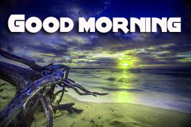 Good Morning Images Wallpaper Photo Pic Download