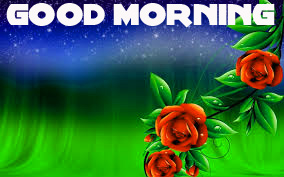 Good Morning Wishes Images Wallpaper pictures With Red Rose