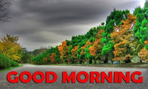 Good Morning Photo Images Pics HD Download