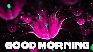 Good Morning Images Pictures Wallpaper HD Download for Whatsaap