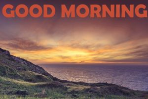 Good Morning Images Photo Pictures HD Download