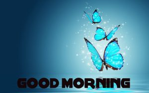 Good Morning Images Wallpaper Pics HD Download With Butterfly