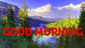Good Morning Photo Images Wallpaper For Facebook