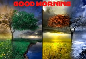 Good Morning Wishes Images Wallpaper Pics HD Download