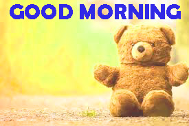Good Morning Pictures Photo Images HD Download For Whatsapp