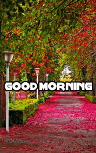 Good Morning Wishes Images Pics Wallpaper for Love Couple