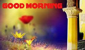 Good Morning Wishes Images Photo Wallpaper Pictures HD Download