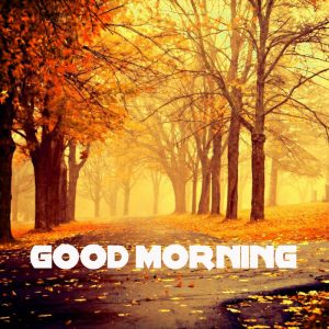 Good Morning Wishes Images Wallpaper Pics HD Download for Whatsaap