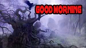 Good Morning Wishes Images Pictures Wallpaper HD Download