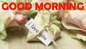 Good Morning Pictures Photo Images HD Download