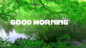 Good Morning Wishes Images Pictures Wallpaper Download