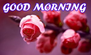 Good Morning All Wallpaper Images Photo Download