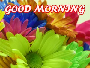 Good Morning All Pictures Images Photo Free HD