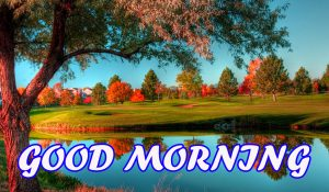 Good Morning All Photo Images Pictures HD Download
