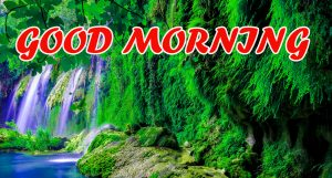 Good Morning All Pictures Images Wallpaper Photo HD Download