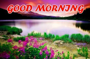 Good Morning All Images Pictures Photo HD Download