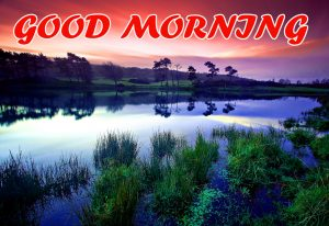 Good Morning All Photo Images Pictures Wallpaper HD