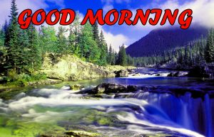 Good Morning All Pictures Photo Pics Free HD