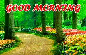 Good Morning All Wallpaper Photo Images HD