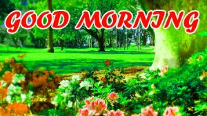 Good Morning All Pictures Images Photo HD For Facebook