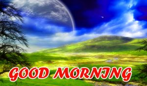 Good Morning All Images Photo Wallpaper Free HD