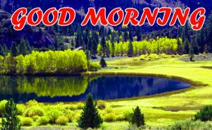Good Morning All Pictures Images Photo HD Download