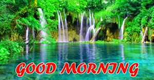 Good Morning All Wallpaper Pictures Images HD