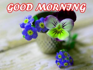 Gud Morning Wallpaper Photo Images Pictures Download