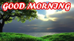 Gud Morning Photo Images Pictures Wallpaper Download For Facebook