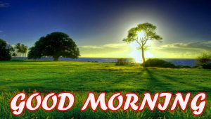 Gud Morning Photo Images Pictures Wallpaper Download