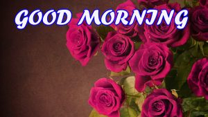 Gud Morning Wallpaper Images Pictures Photo Free Download