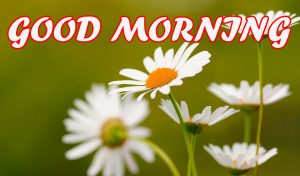 Gud Morning Images Photo Wallpaper Pictures HD