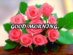 Gud Morning Wallpaper Images Photo Pictures HD