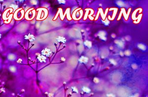 Gud Morning Photo Images Pictures Wallpaper Download For Whatsapp